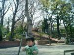 たくさんの公園や神社で