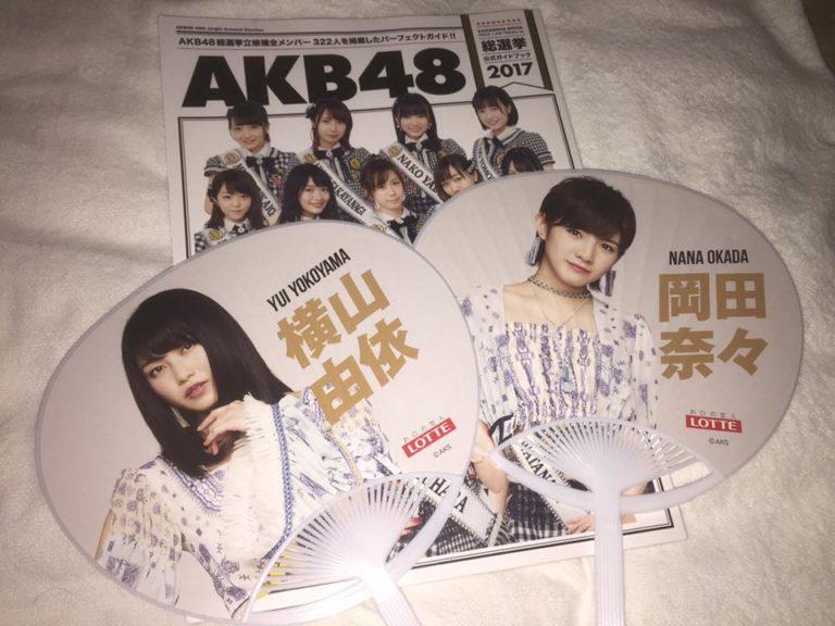 AKEB48の冊子とうちわ